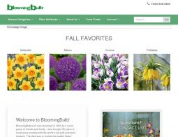 Blooming Bulb