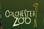 Colchester Zoo Discount Codes & Deals