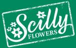 Scilly Flowerss