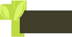Eco Web Hosting Discount Codes & Deals