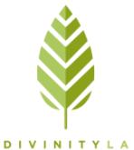 Divinity LA Promo Codes & Deals