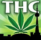Toronto Hemp Company Promo Codes & Deals