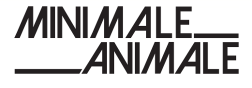 Minimale Animale Promo Codes & Deals