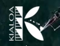 Kialoa