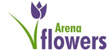 Arena Flowers IN