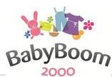 Baby Boom 2000