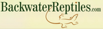 Backwater Reptiles Promo Codes
