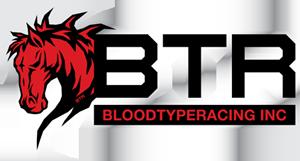 Blood Type Racing coupon code