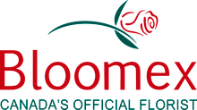BloomEx Promo Code