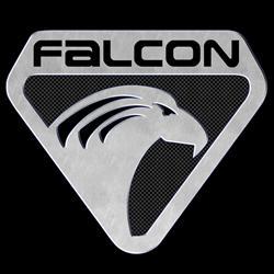 Falcon Computers