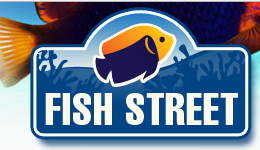 Fish Street discount code
