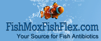 FishMoxFishFlex coupons