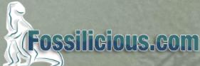 Fossilicious