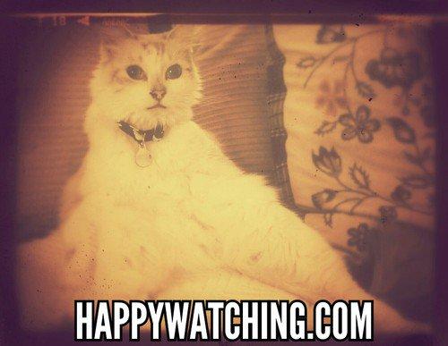 Happy Watching discount code
