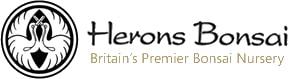 Herons Bonsai