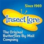 Insect Lores