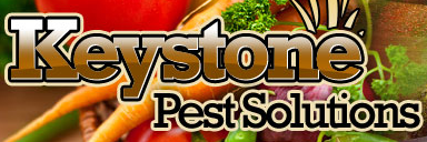 Keystone Pest Solutions Promotional Codes