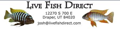 Live Fish Direct