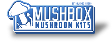 Mushbox Coupon