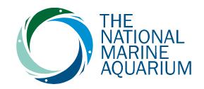 National Marine Aquarium discount codes