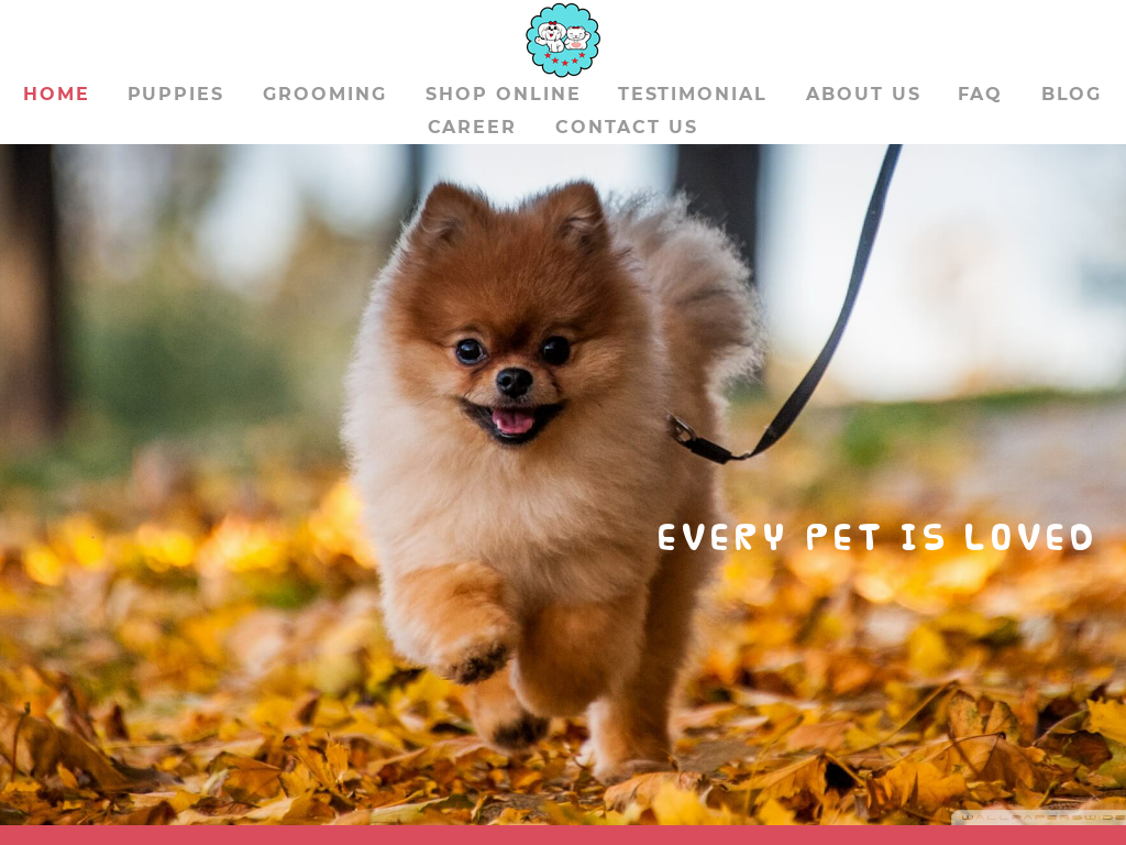 The lovely Pets Promo Codes & Discount Codes 2018