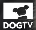 Dogtv Promo Codes 2018