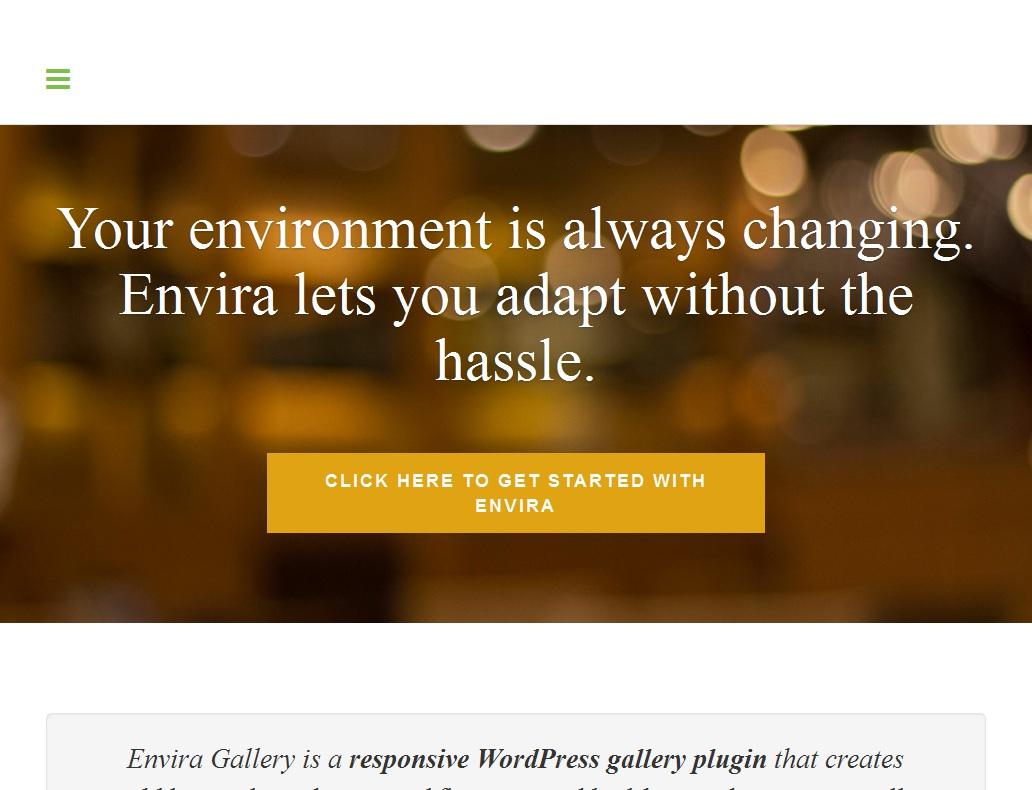 Envira Gallery Coupon