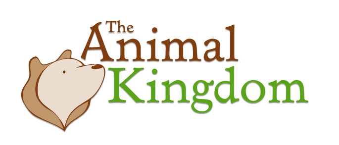 The Animal Kingdom Promo Codes & Deals