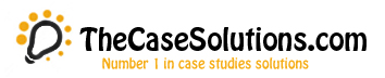 TheCaseSolutions coupons