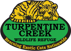 Turpentine Creek Wildlife Refuge coupons