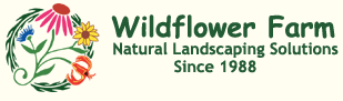 Wildflower Farm