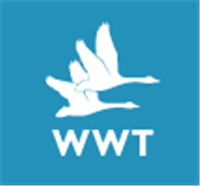 WWT Discount Code