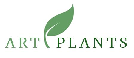 Artplants