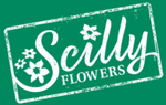 Scilly Flowerss Promo Codes & Coupons
