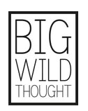Big Wild Thought Promo Codes & Coupons