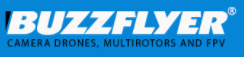BuzzFlyer Coupons