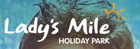 Ladys Mile Promo Codes & Coupons