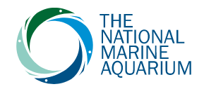 National Marine Aquarium Promo Codes & Coupons