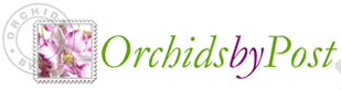 Orchids by Post Promo Codes & Coupons