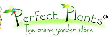 Perfect Plants Promo Codes & Coupons