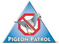 Pigeon Patrol Promo Codes & Coupons