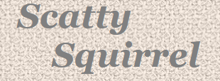 Scatty Squirrel Promo Codes & Coupons