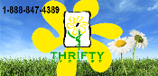 Thrifty Florist Promo Codes & Coupons